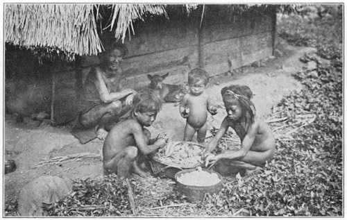 Igorrote Children Preparing Sweet Potatoes